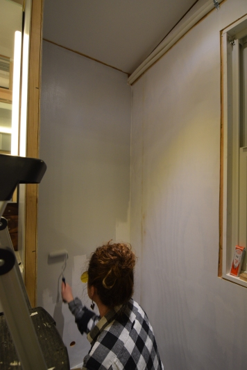Painting the bathroom toilet alcove