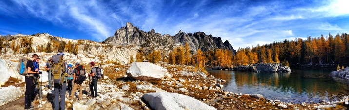 Golden Larch Landscape