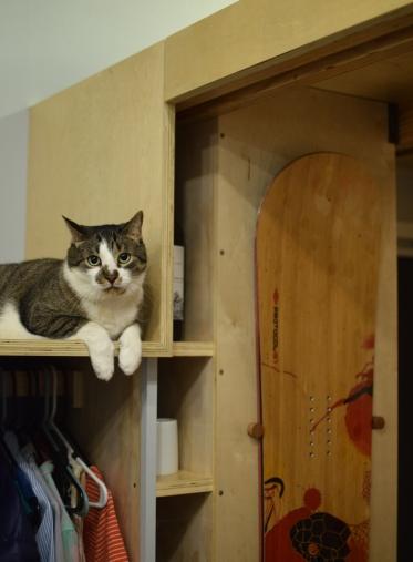 Tobey's favorite stair.