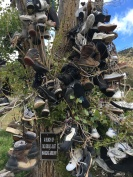 The Shoe Tree, OR. May, 2016