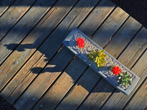 Back patio table detail with reclaimed wood