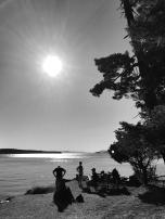 Jones Island, WA June 2016