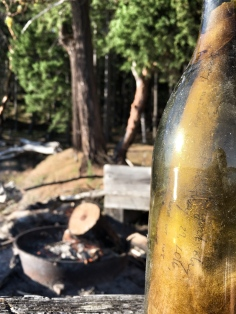 A real message in a bottle was found on the way to Jones Island, WA June 2016
